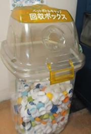 エコキャップの回収活動